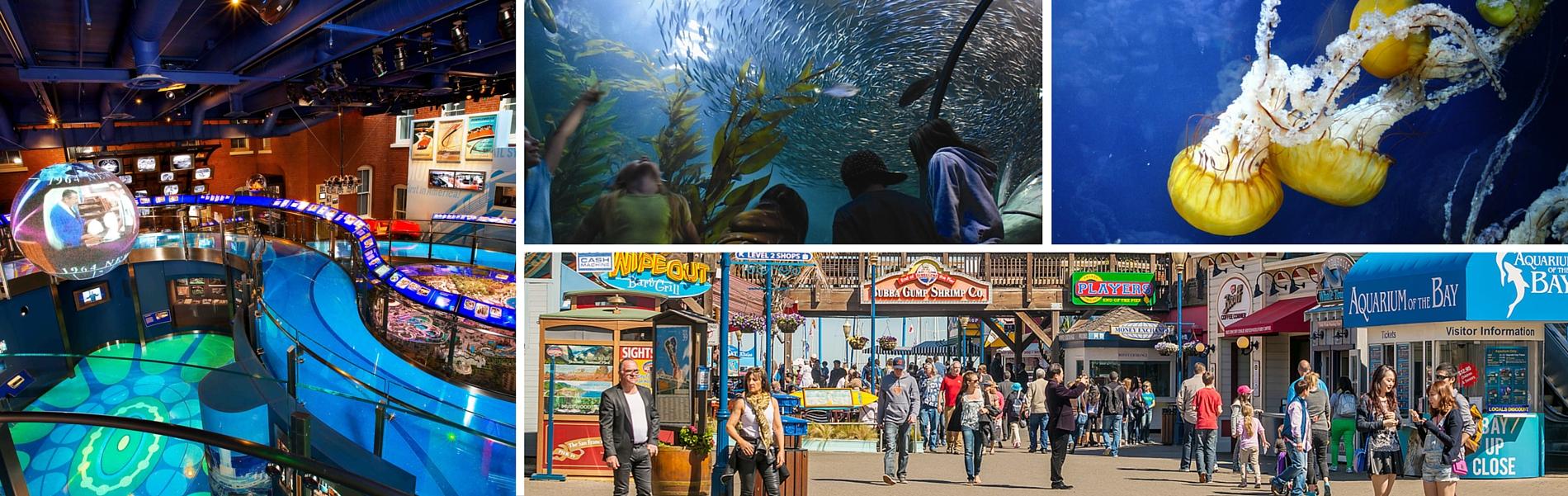 Northern California Attractions | Santa Clara Attractions